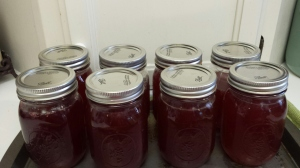 Sandplum jelly
